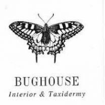 Bughouse