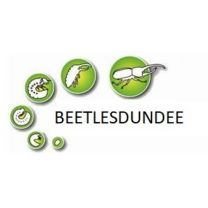 Beetlesdundee insect shop